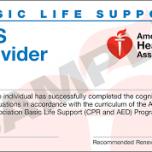 AHA - Basic Life Support (BLS)